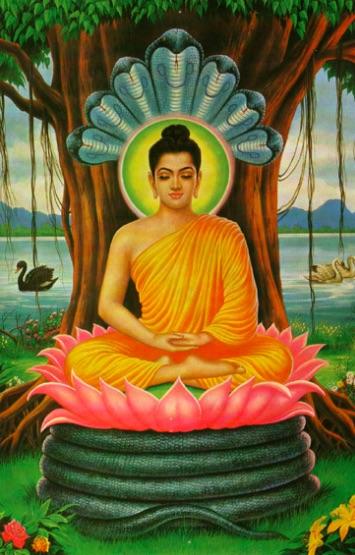 meditating-buddha