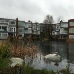 vancouver_bc_ubc_36